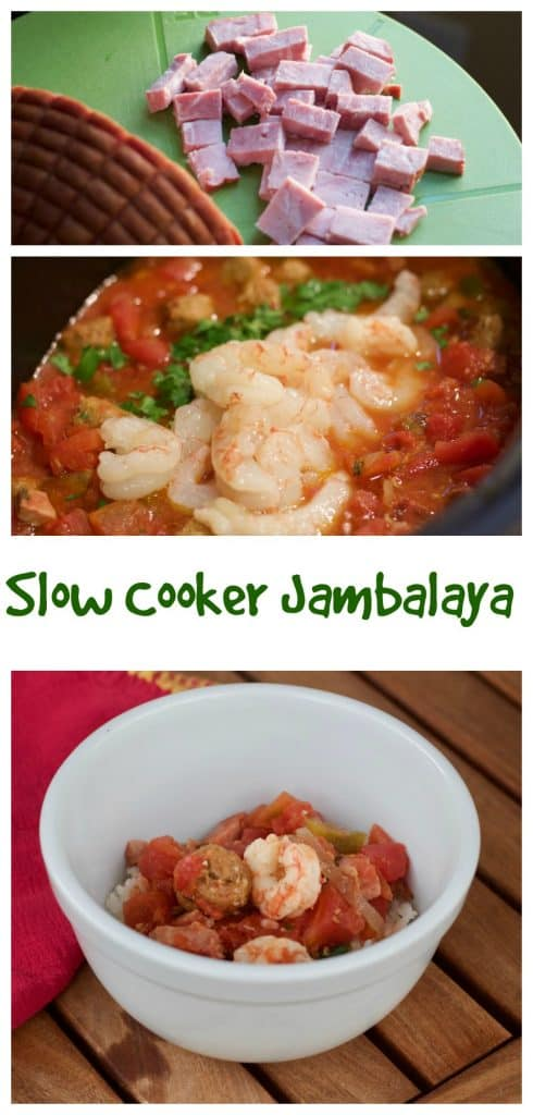 Slow Cooker Jambalaya || Erin Brighton | gluten free | slow cooker | easy dinners | Got To Be NC