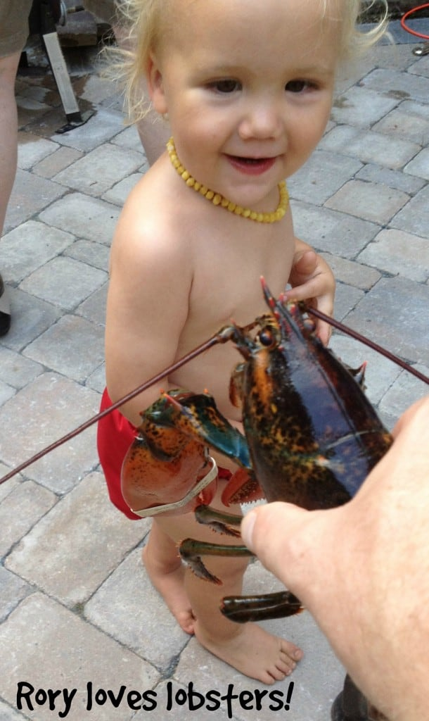 Rory Loves Lobsters