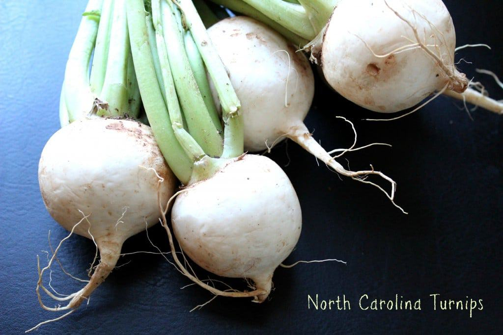 North Carolina Turnips