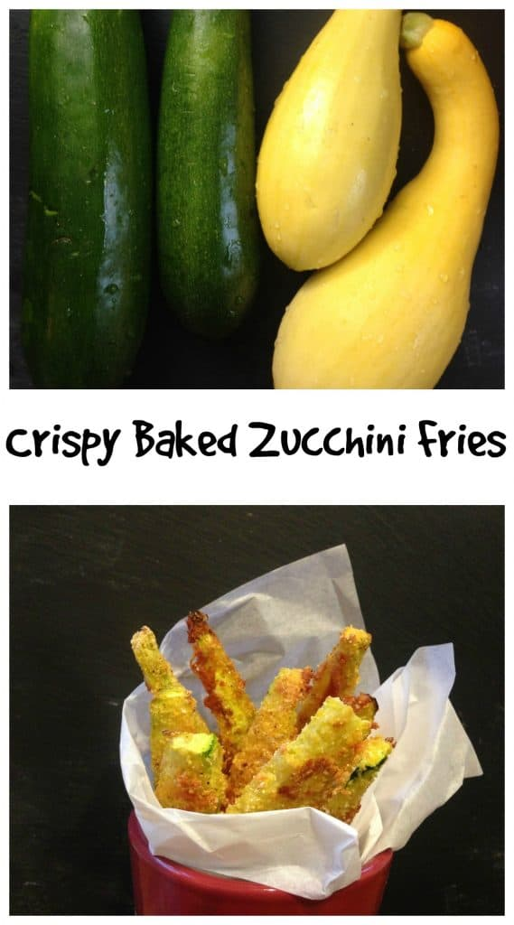 Crispy Baked Zucchini Fries || Erin Brighton | gluten free | sides | family friendly | veggie recipes