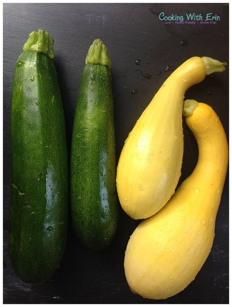Garden Fresh Zucchini and Summer Squash