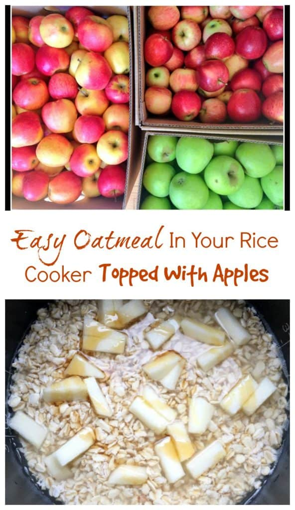 Easy Oatmeal in Your Rice Cooker