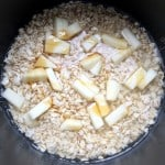 Easy Oatmeal in a Rice Cooker