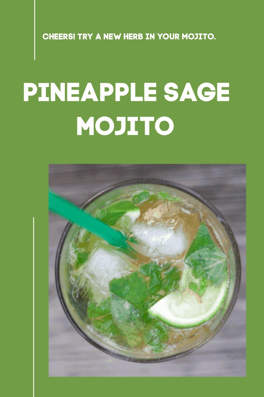 Pineapple Sage Mojito