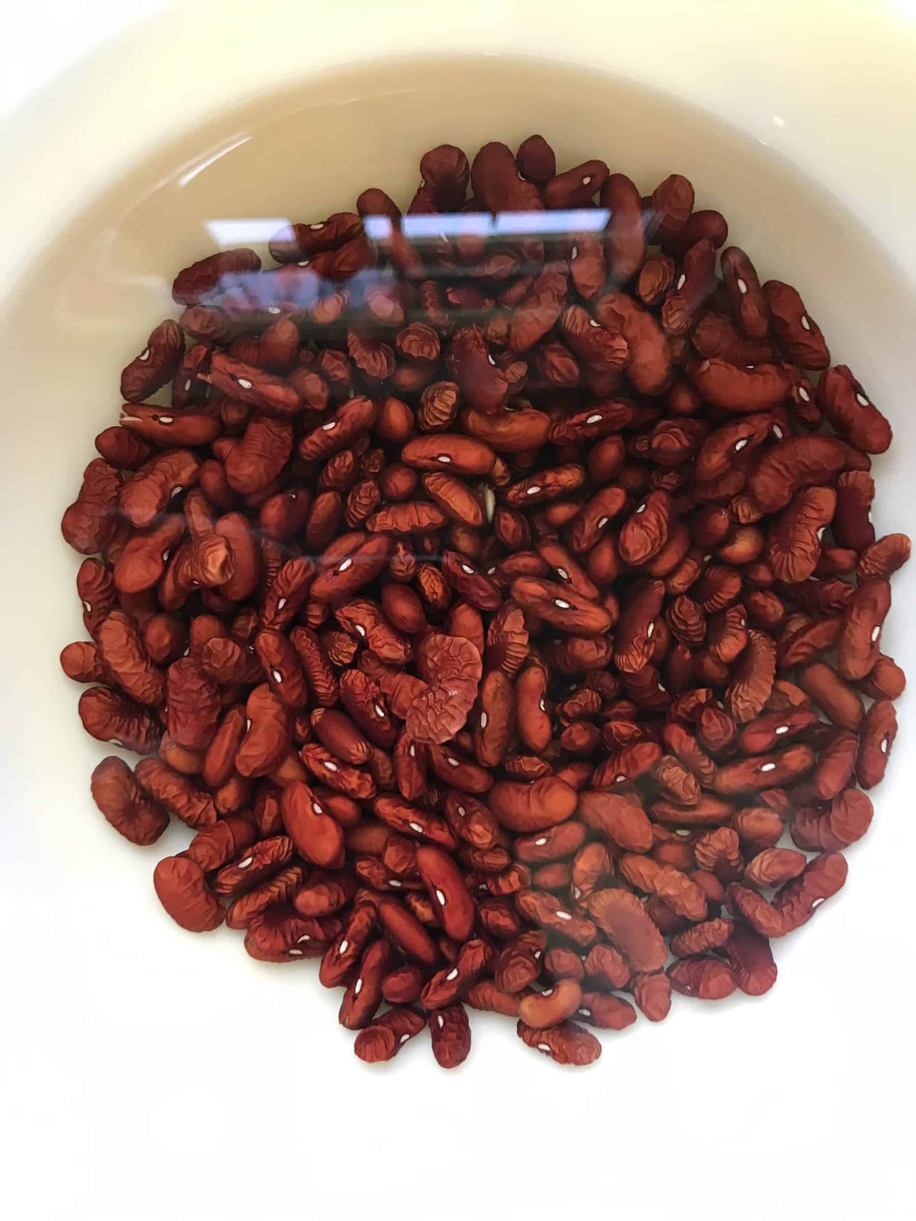 Red Kidney Beans Soaking