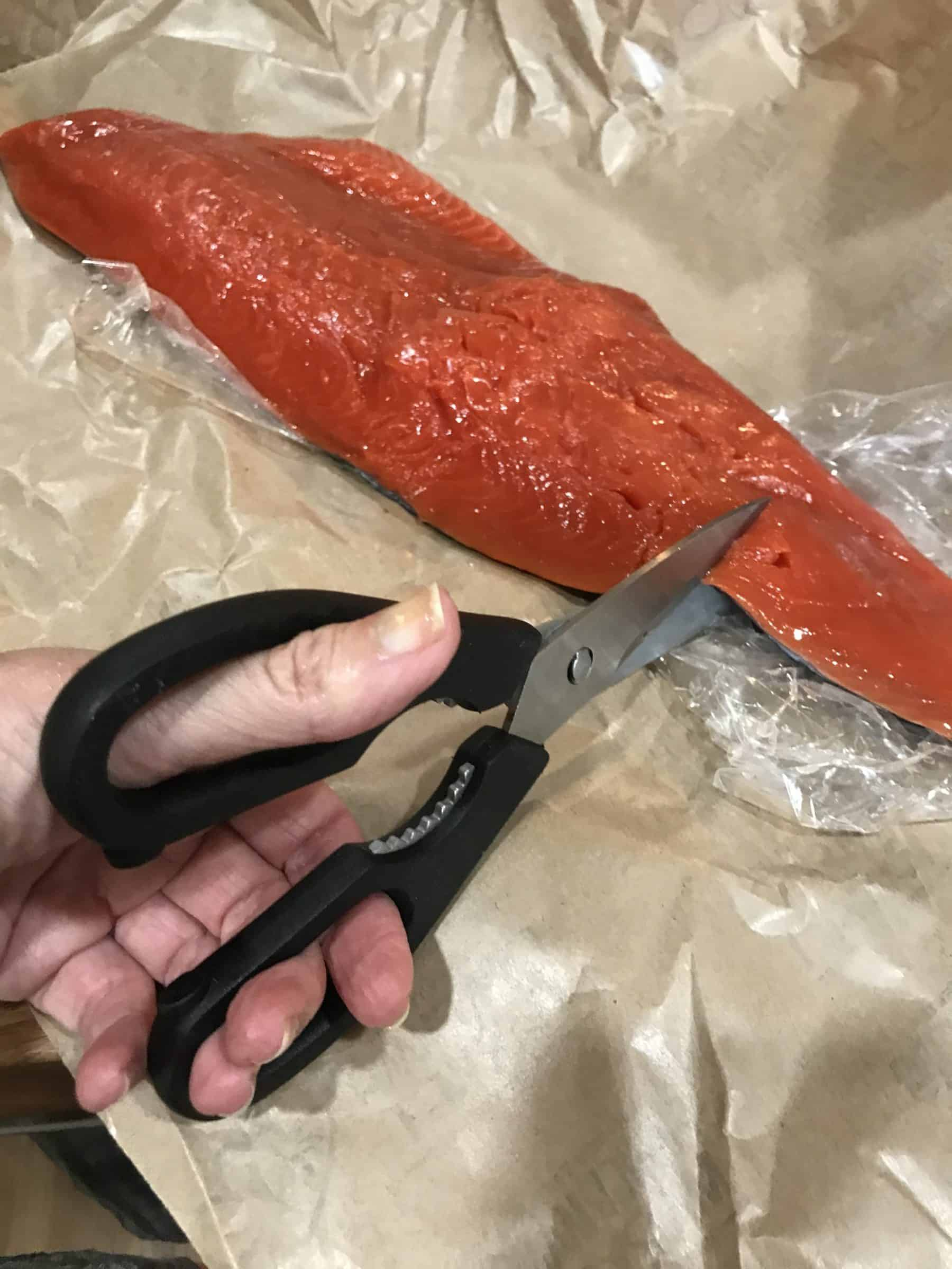 cutting wild salmon with scissors